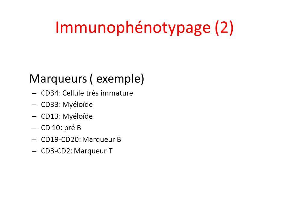 Immunophénotypage (2) Marqueurs ( exemple) CD34: Cellule très immature