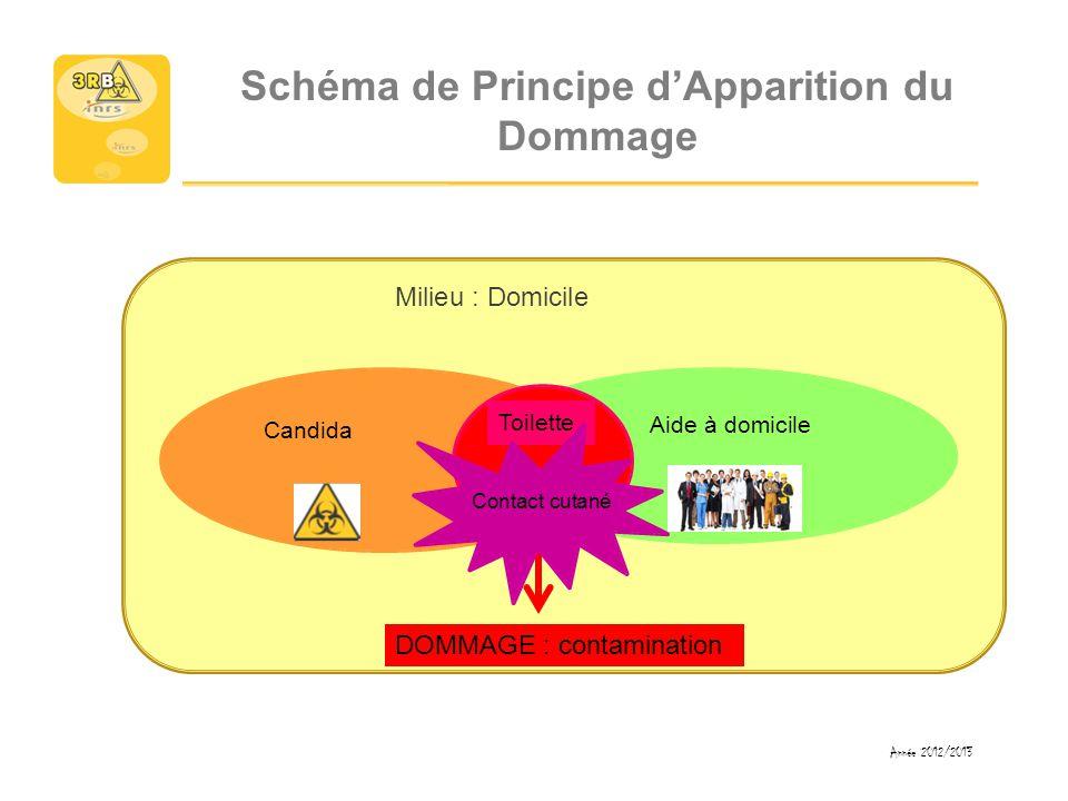 Schéma de Principe d'Apparition du Dommage