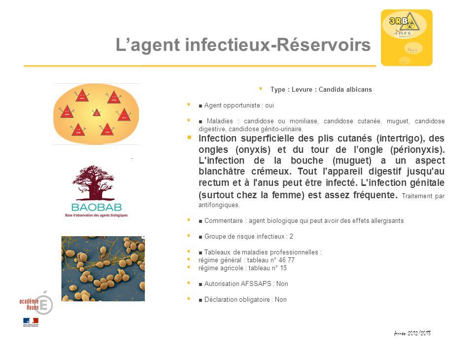 L'agent infectieux-Réservoirs