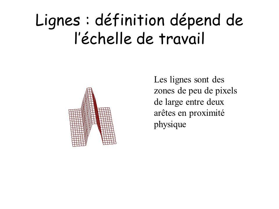 Lignes : définition dépend de l'échelle de travail
