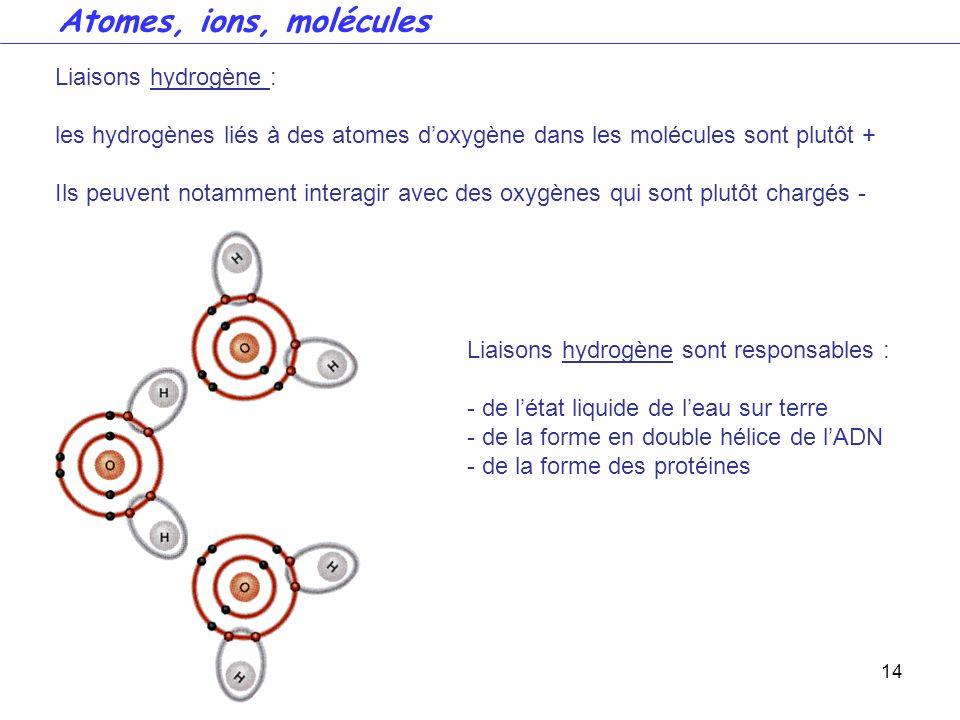 Atomes, ions, molécules Liaisons hydrogène :