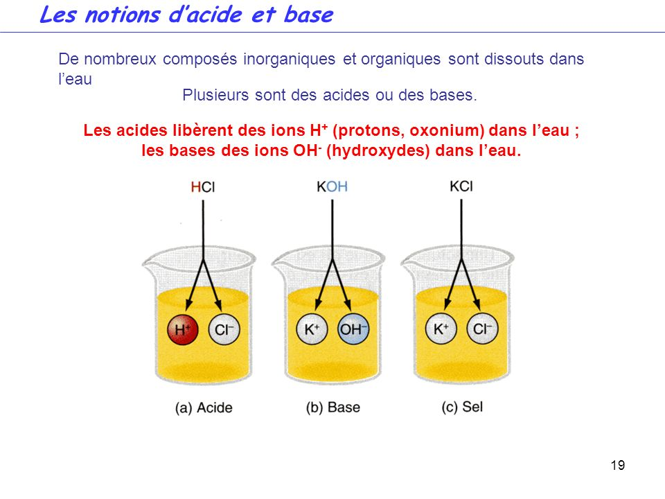 Les notions d'acide et base