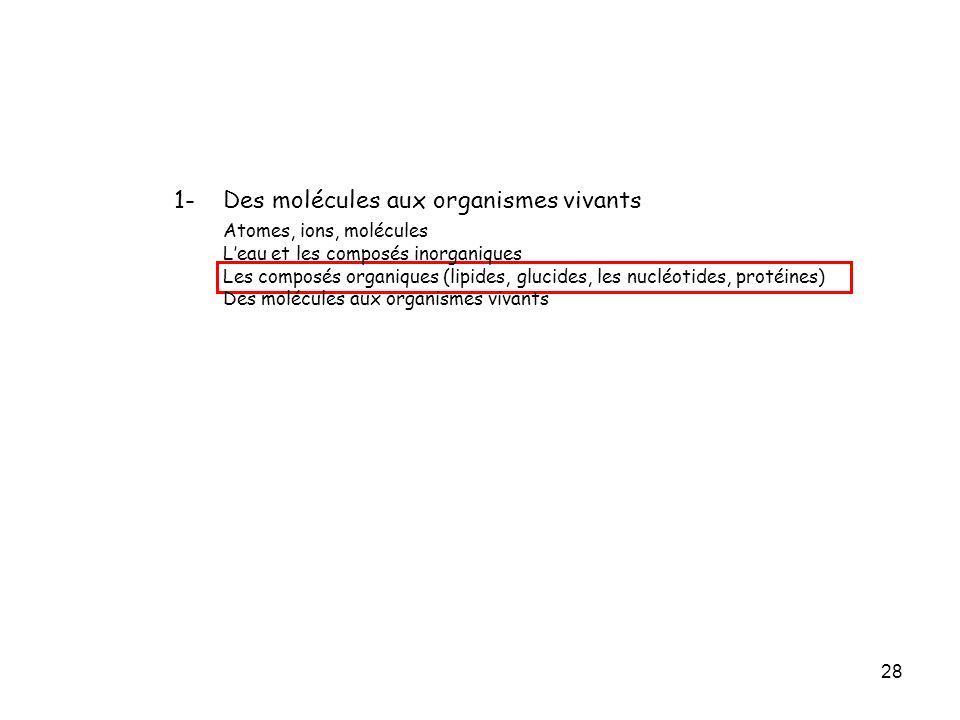 1- Des molécules aux organismes vivants Atomes, ions, molécules
