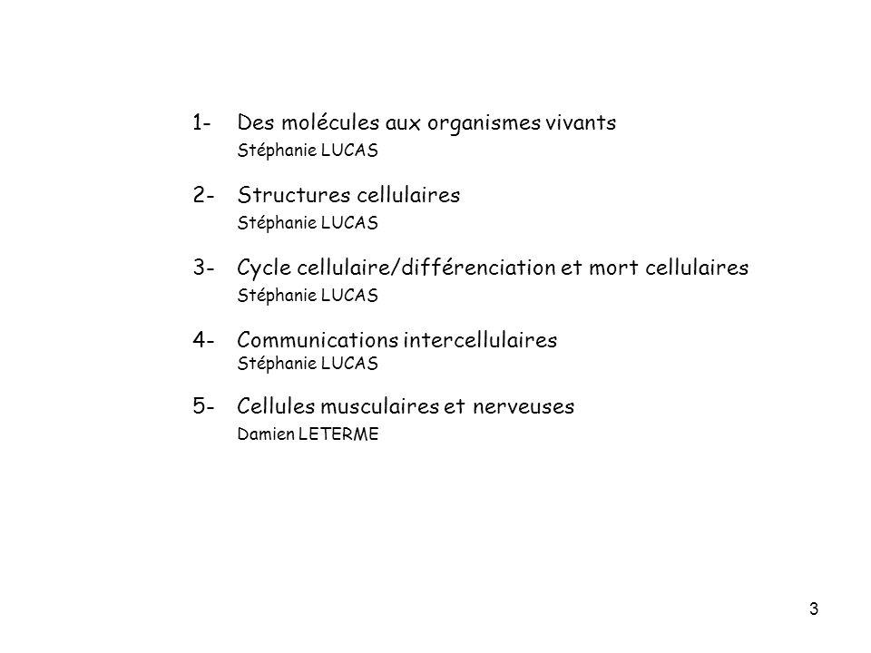 1- Des molécules aux organismes vivants