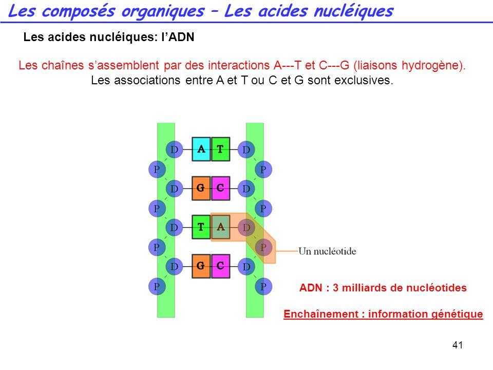 Les composés organiques – Les acides nucléiques