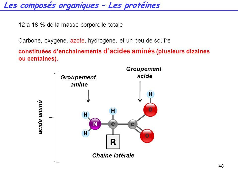 Les composés organiques – Les protéines