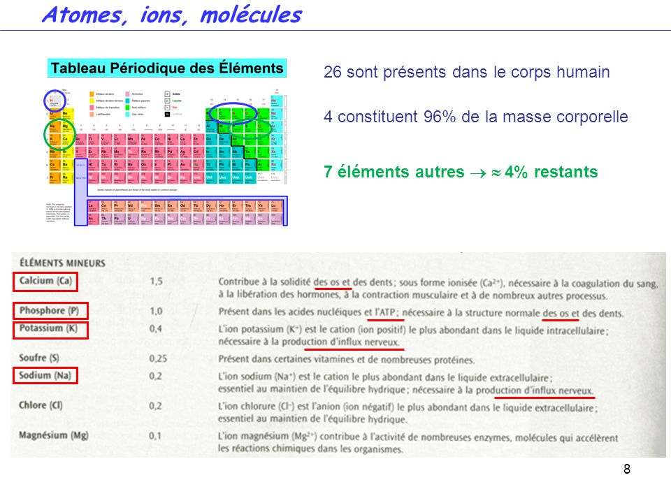 Atomes, ions, molécules 26 sont présents dans le corps humain
