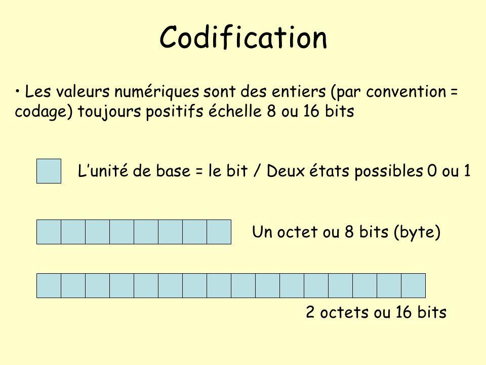 Codification Les valeurs numériques sont des entiers (par convention = codage) toujours positifs échelle 8 ou 16 bits.