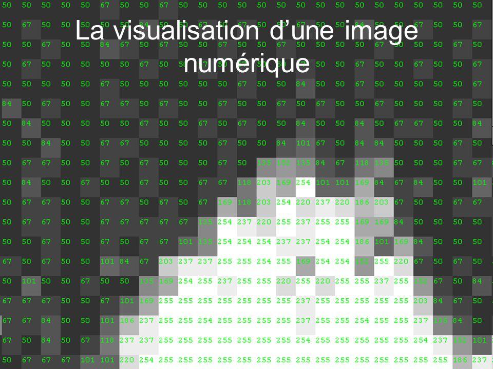 La visualisation d'une image numérique