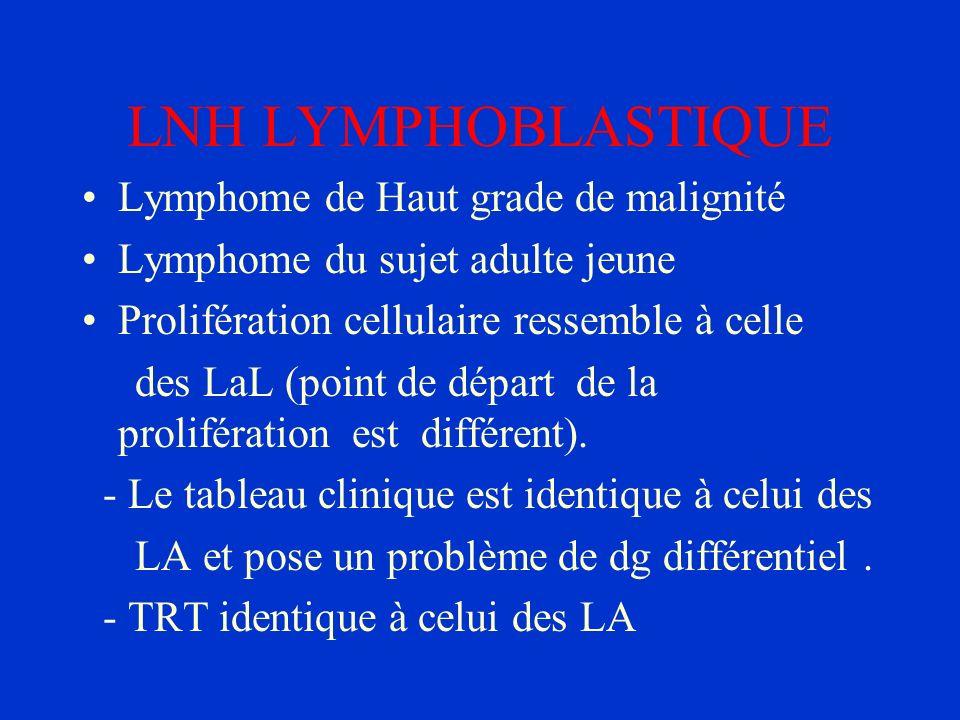 LNH LYMPHOBLASTIQUE Lymphome de Haut grade de malignité