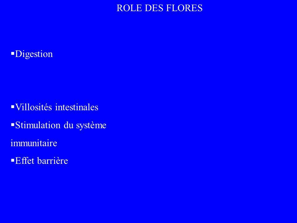 ROLE DES FLORES Digestion Villosités intestinales Stimulation du système immunitaire Effet barrière