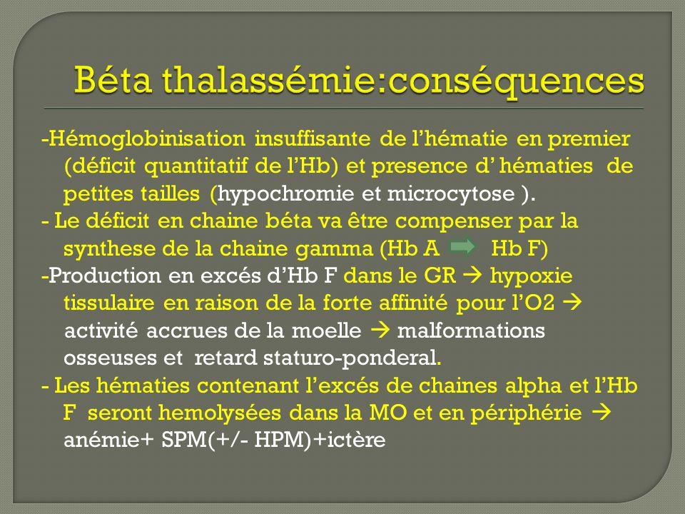 Béta thalassémie:conséquences