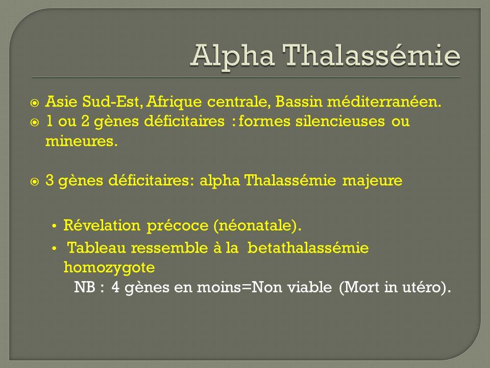 Alpha Thalassémie Asie Sud-Est, Afrique centrale, Bassin méditerranéen. 1 ou 2 gènes déficitaires : formes silencieuses ou mineures.