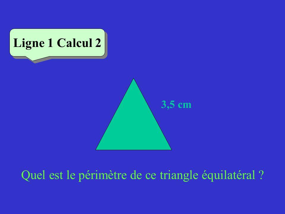 Quel est le périmètre de ce triangle équilatéral