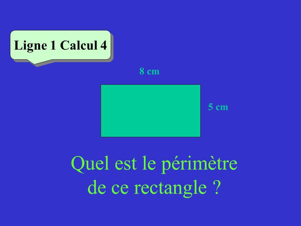 Quel est le périmètre de ce rectangle