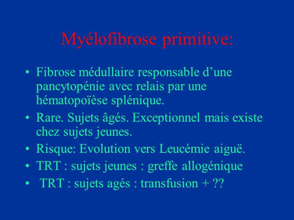 Myélofibrose primitive: