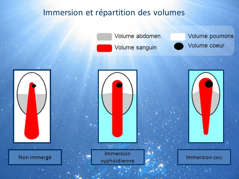 Immersion et répartition des volumes