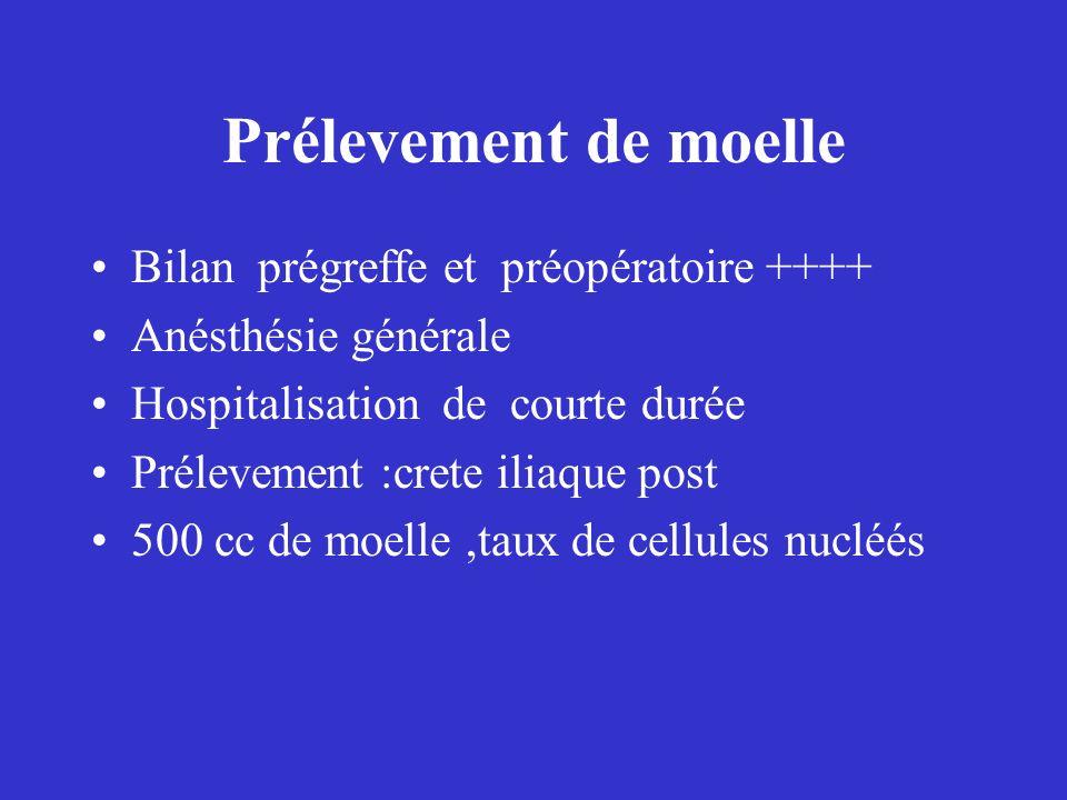 Prélevement de moelle Bilan prégreffe et préopératoire ++++
