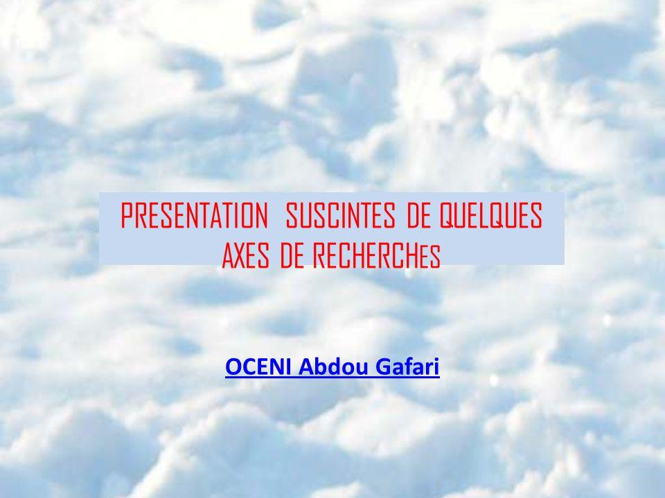 PRESENTATION SUSCINTES DE QUELQUES AXES DE RECHERCHES