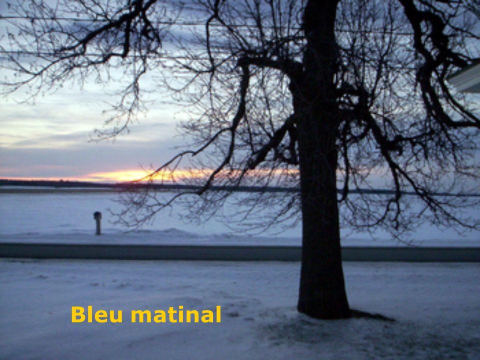 Bleu matinal