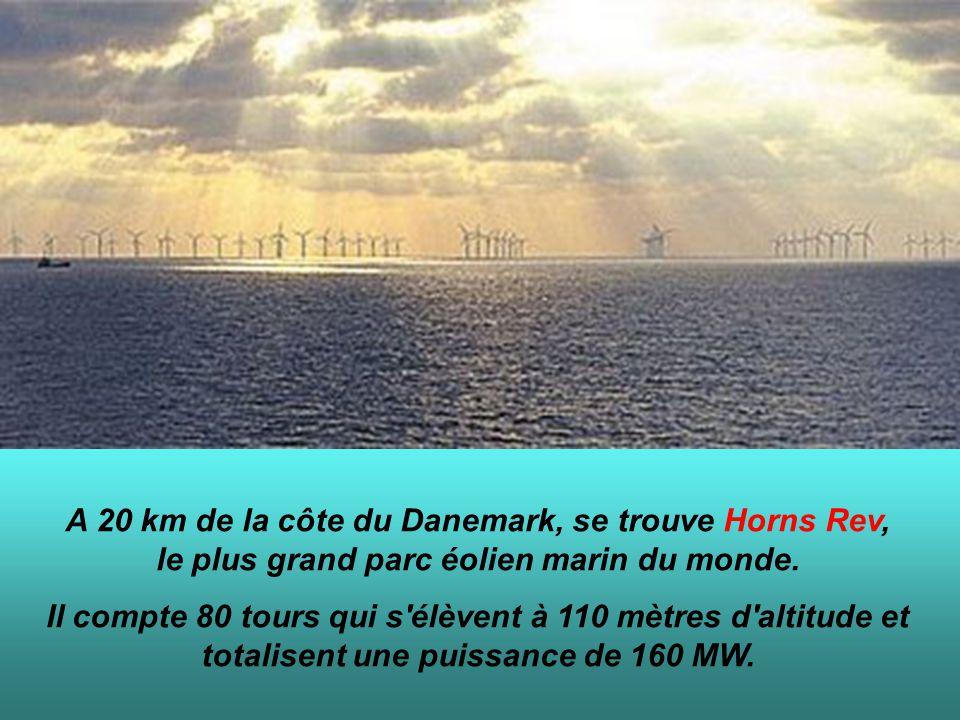 A 20 km de la côte du Danemark, se trouve Horns Rev, le plus grand parc éolien marin du monde.