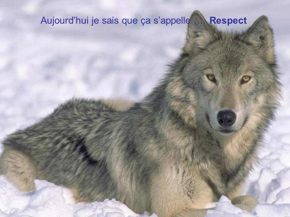 Aujourd'hui je sais que ça s'appelle….. Respect