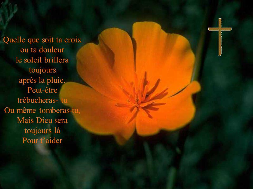 Quelle que soit ta croix ou ta douleur le soleil brillera toujours