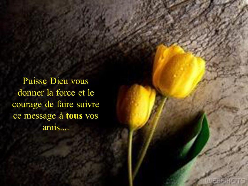 Puisse Dieu vous donner la force et le courage de faire suivre ce message à tous vos amis....