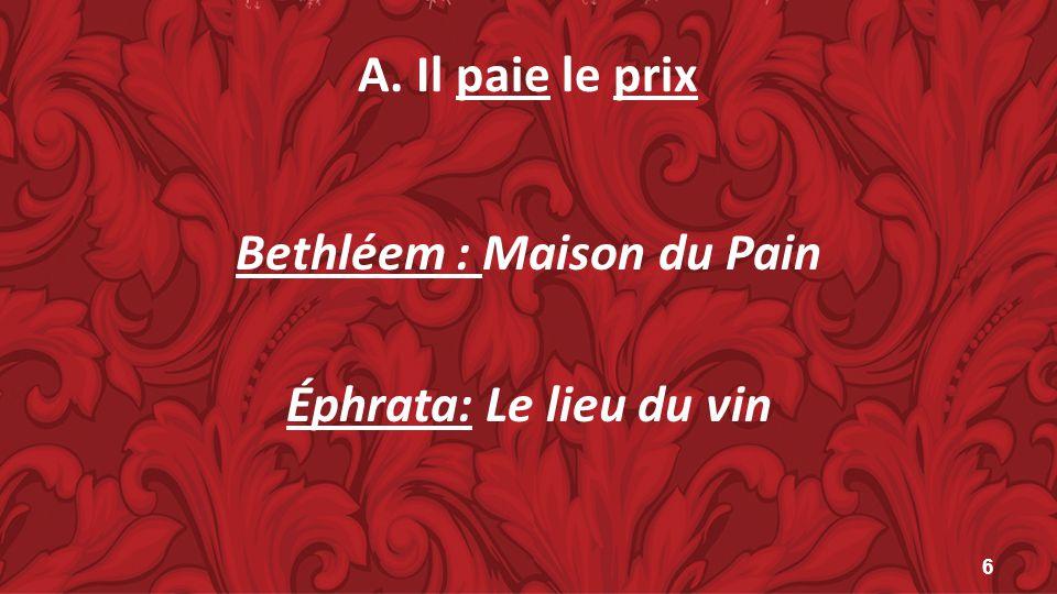 Bethléem : Maison du Pain Éphrata: Le lieu du vin