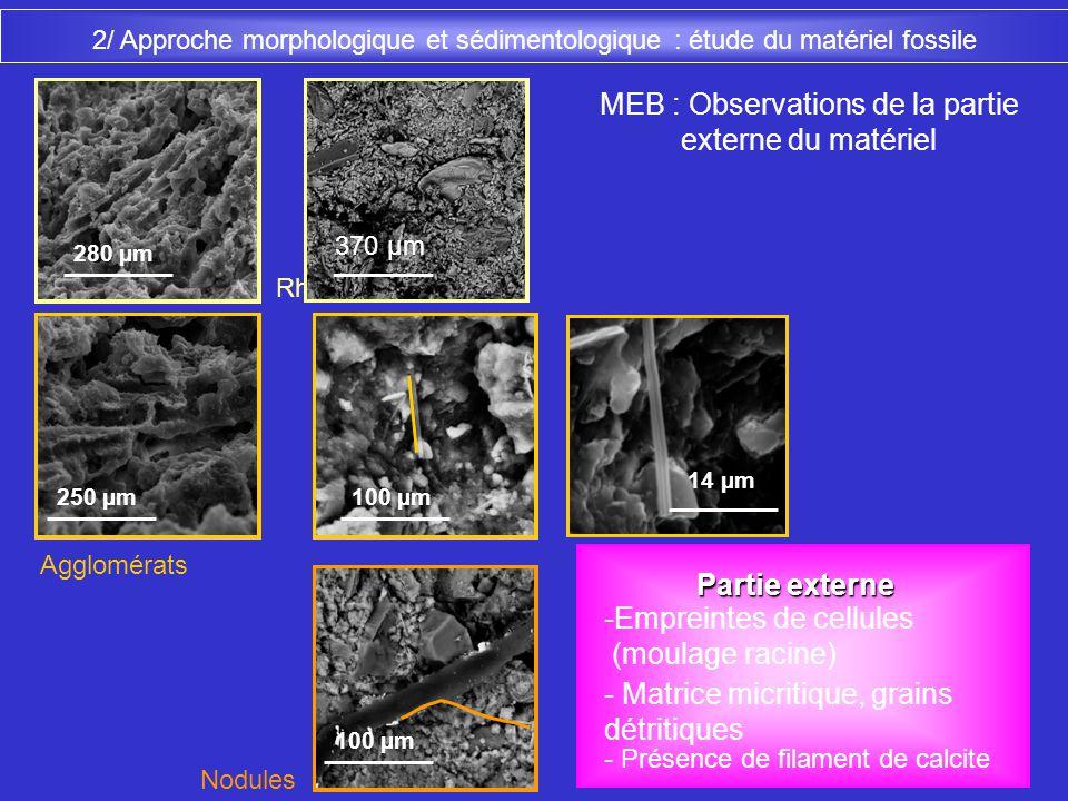 MEB : Observations de la partie externe du matériel