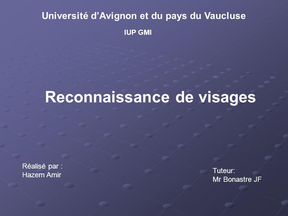 Université d'Avignon et du pays du Vaucluse