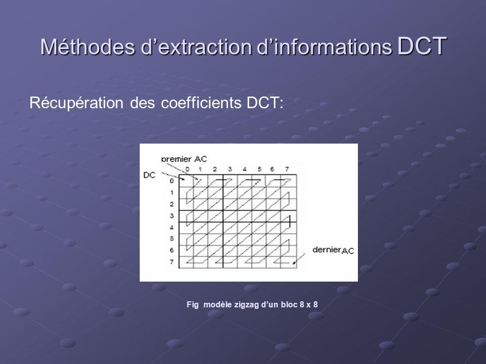 Méthodes d'extraction d'informations DCT