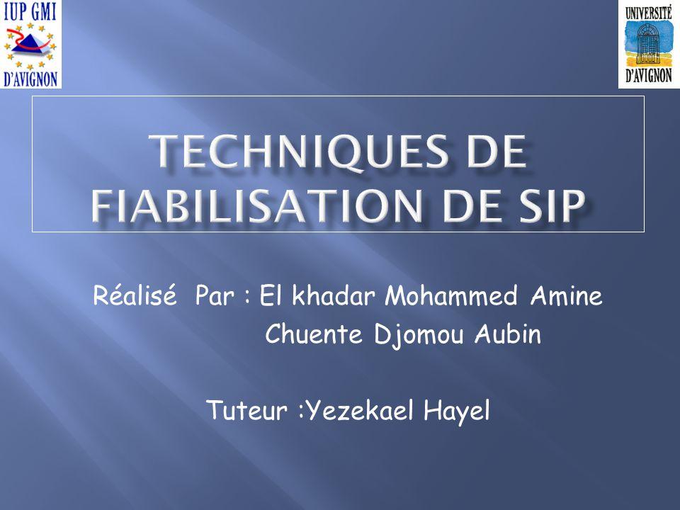 Techniques de fiabilisation de SIP