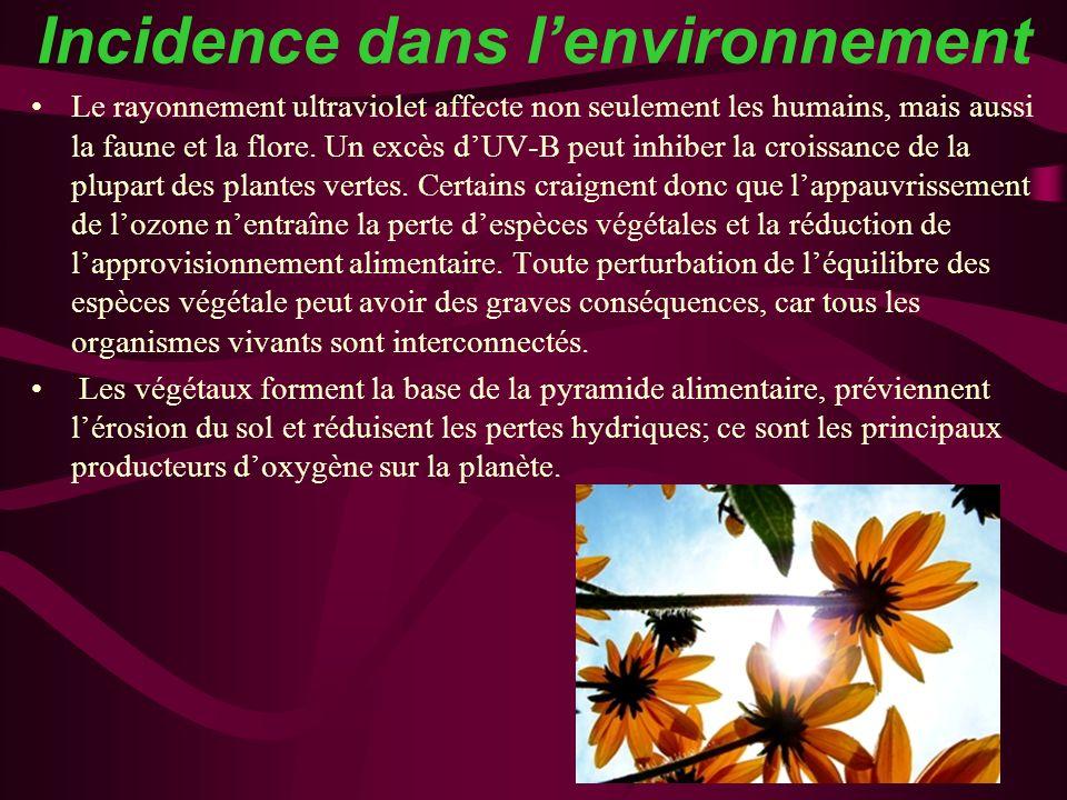 Incidence dans l'environnement