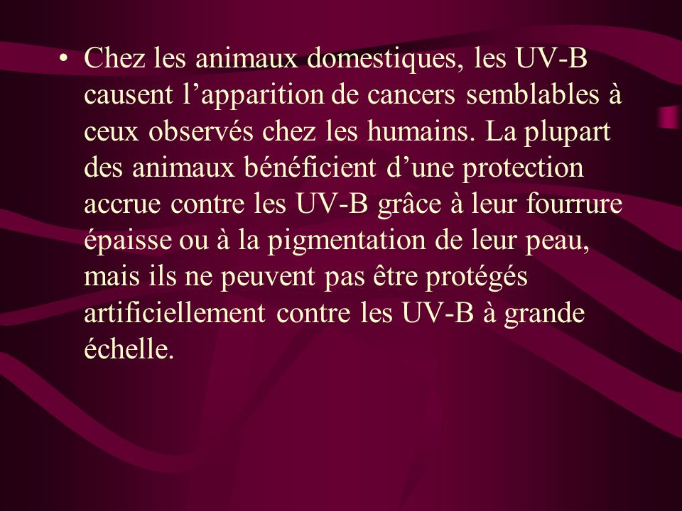 Chez les animaux domestiques, les UV-B causent l'apparition de cancers semblables à ceux observés chez les humains.