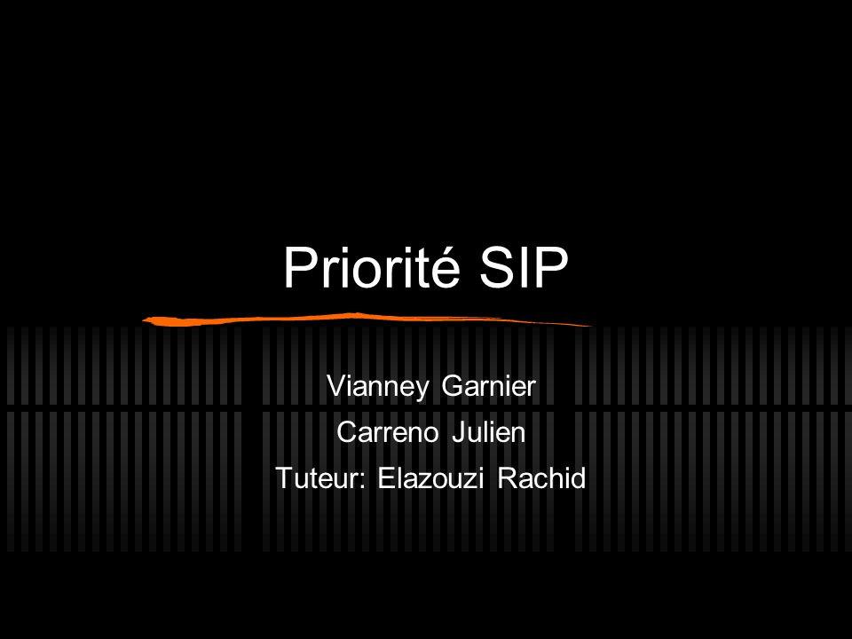 Vianney Garnier Carreno Julien Tuteur: Elazouzi Rachid