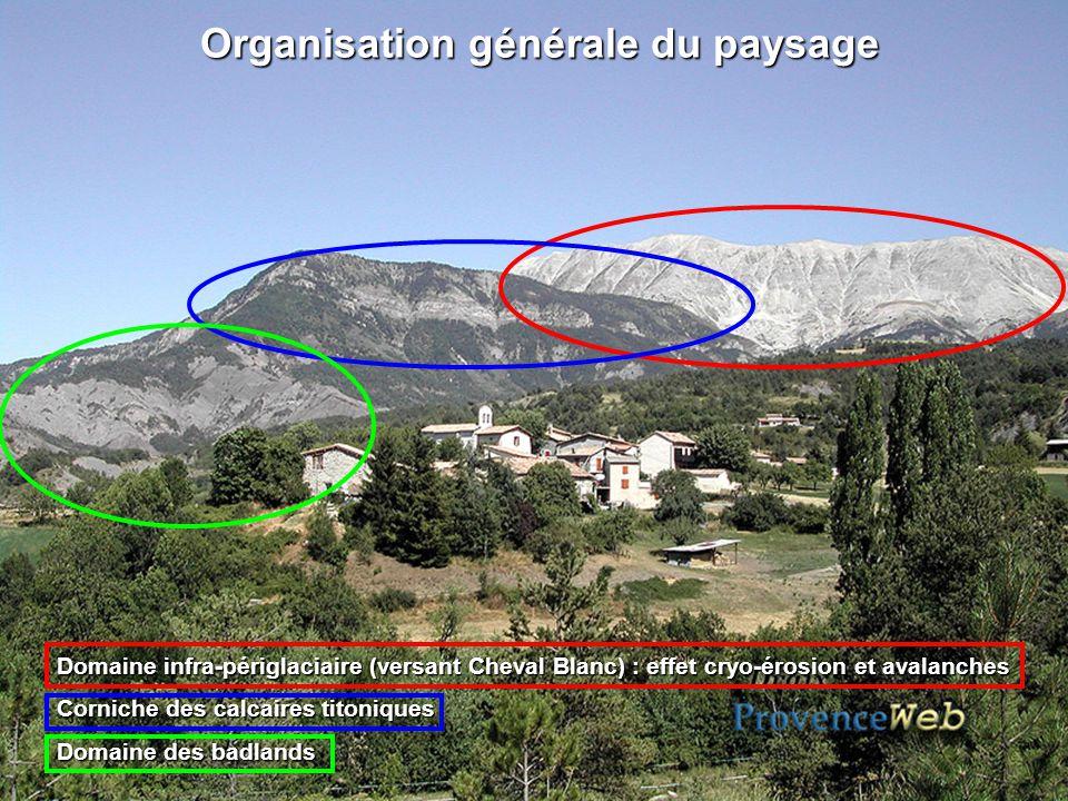 Organisation générale du paysage