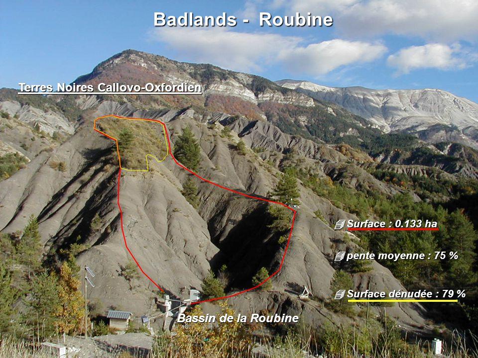 Badlands - Roubine Terres Noires Callovo-Oxfordien