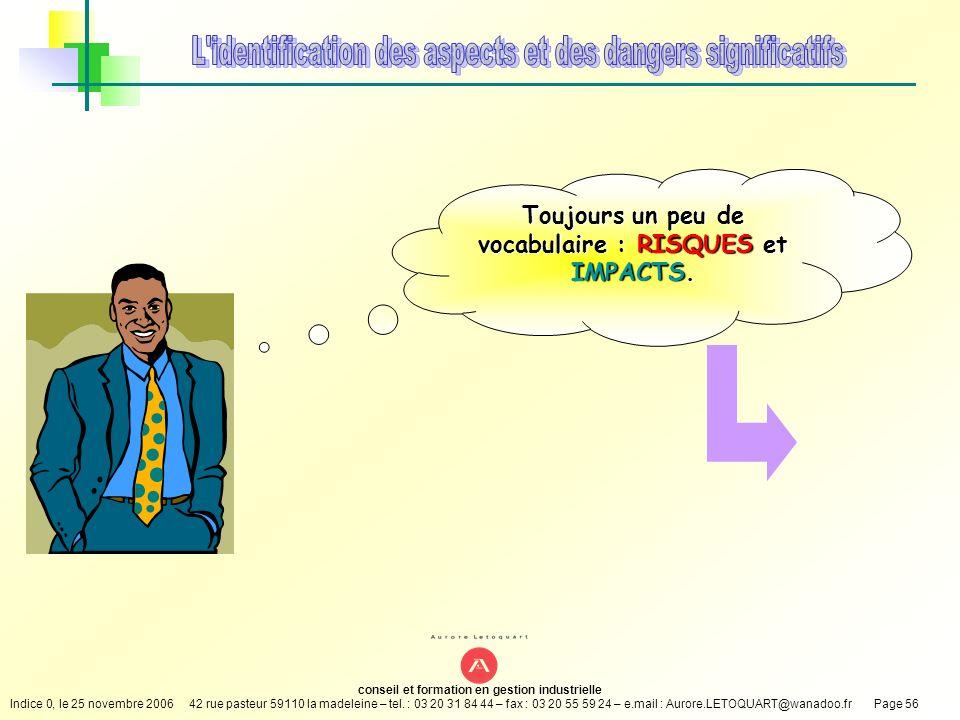 Toujours un peu de vocabulaire : RISQUES et IMPACTS.