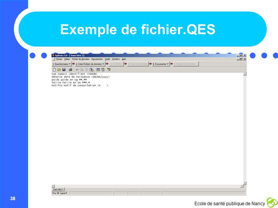 Exemple de fichier.QES
