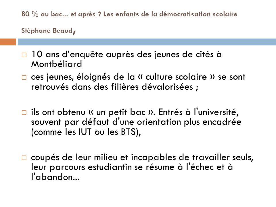 10 ans d'enquête auprès des jeunes de cités à Montbéliard
