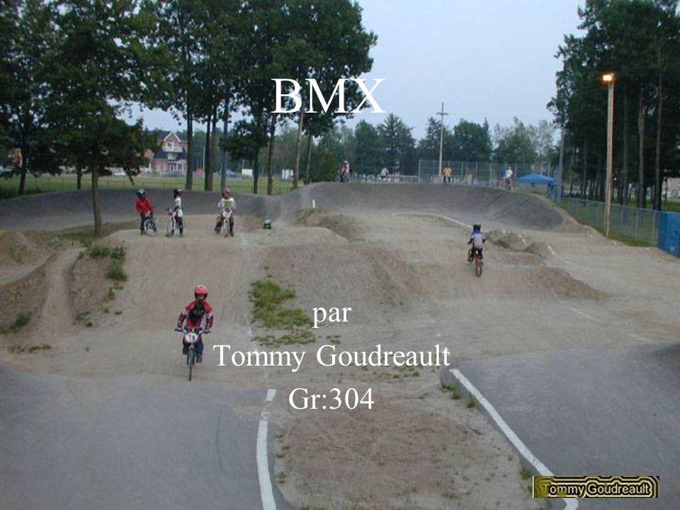 par Tommy Goudreault Gr:304