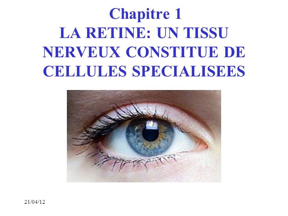 Chapitre 1 LA RETINE: UN TISSU NERVEUX CONSTITUE DE CELLULES SPECIALISEES