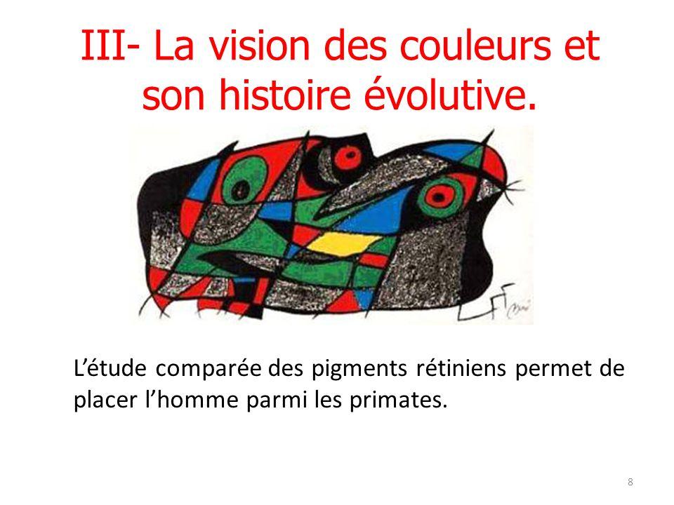 III- La vision des couleurs et son histoire évolutive.