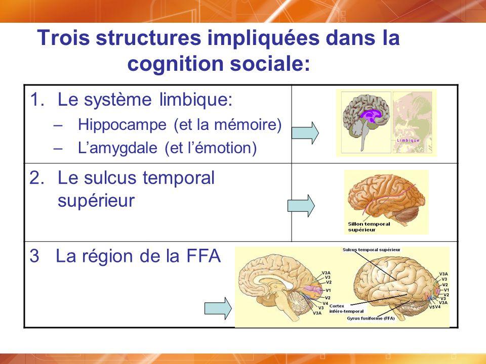 Trois structures impliquées dans la cognition sociale: