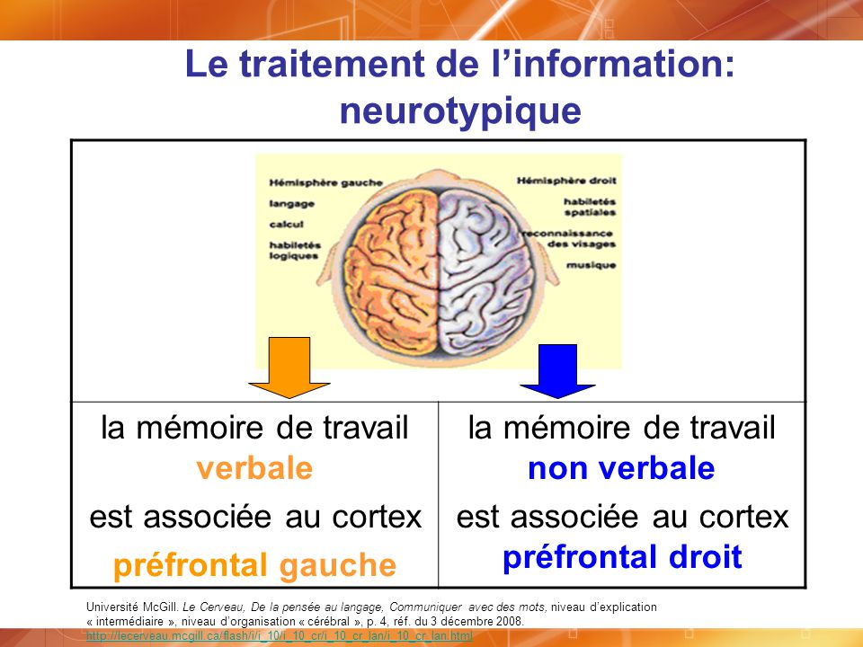 Le traitement de l'information: neurotypique