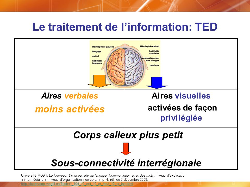Le traitement de l'information: TED