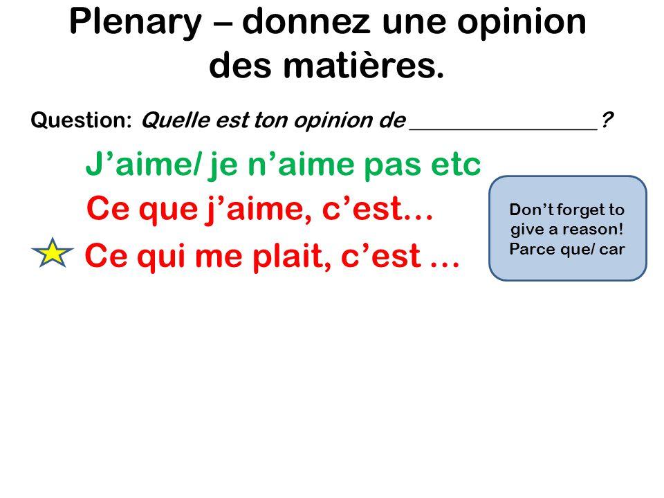 Plenary – donnez une opinion des matières.