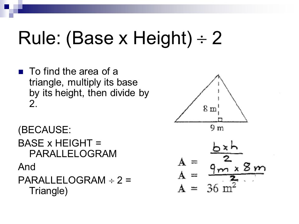 Rule: (Base x Height)  2To find the area of a triangle, multiply its base by its height, then divide by 2.