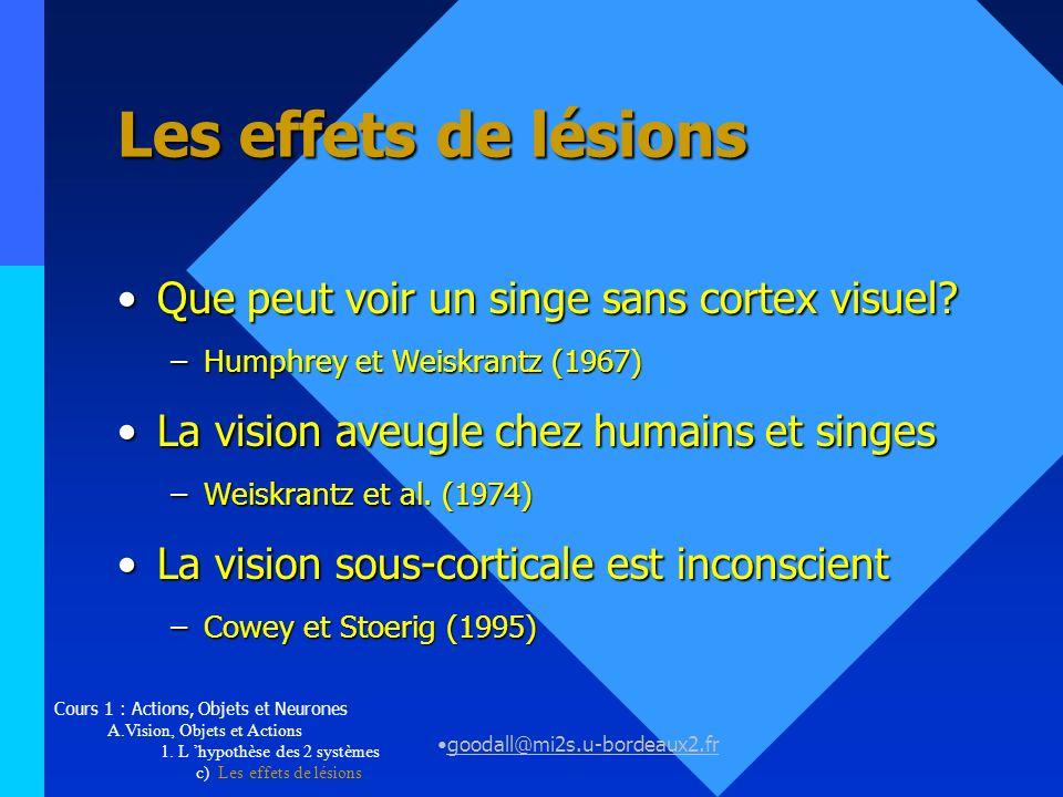 Les effets de lésions Que peut voir un singe sans cortex visuel